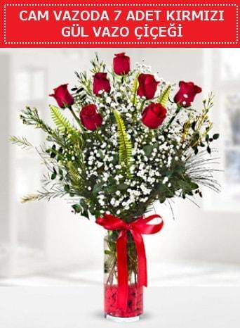 Cam vazoda 7 adet kırmızı gül çiçeği  Sakarya cicek , cicekci
