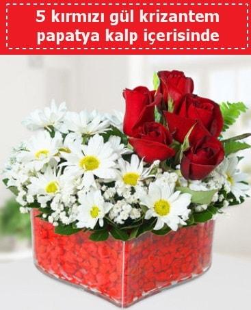 mika kalp içerisinde 5 kırmızı gül papatya  Sakarya uluslararası çiçek gönderme