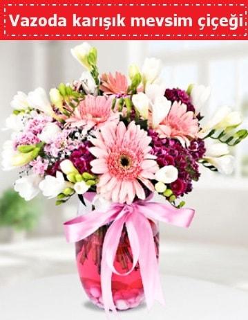 Vazoda karışık mevsim çiçeği  Sakarya hediye sevgilime hediye çiçek