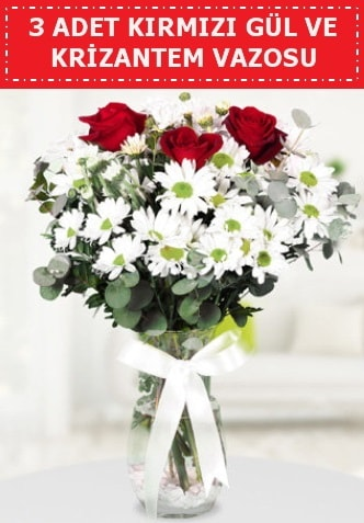 3 kırmızı gül ve camda krizantem çiçekleri  Sakarya uluslararası çiçek gönderme