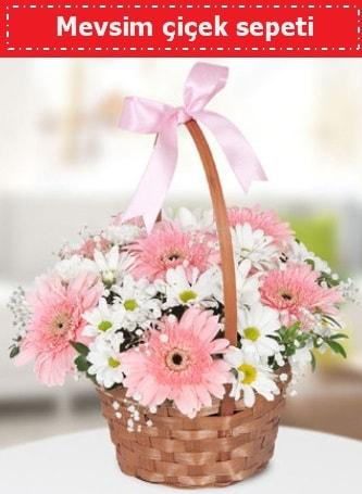 Mevsim kır çiçek sepeti  Sakarya hediye sevgilime hediye çiçek