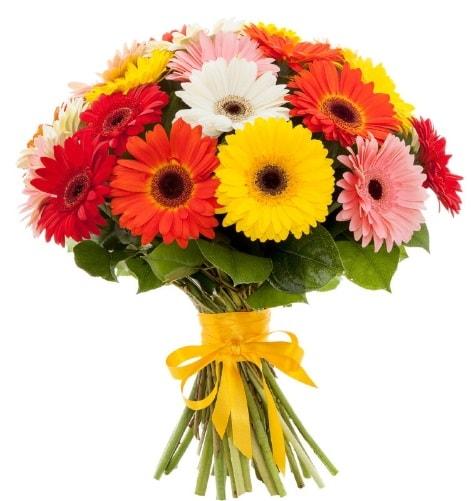 Gerbera demeti buketi  Sakarya anneler günü çiçek yolla
