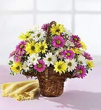 Sakarya yurtiçi ve yurtdışı çiçek siparişi  Mevsim çiçekleri sepeti